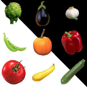 vegetables.jpg (56043 bytes)